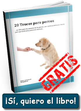 libro-perrospedia1